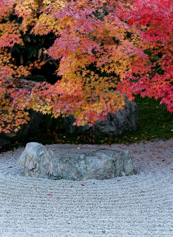 100-Views-Kyoto-49.jpg