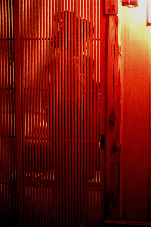 100-Views-Maiko-Geiko-95.jpg