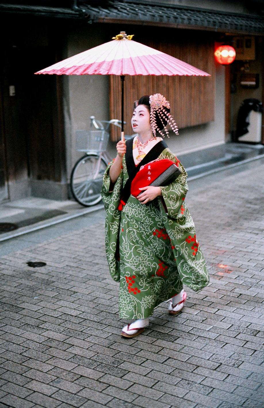 100-Views-Maiko-Geiko-51.jpg