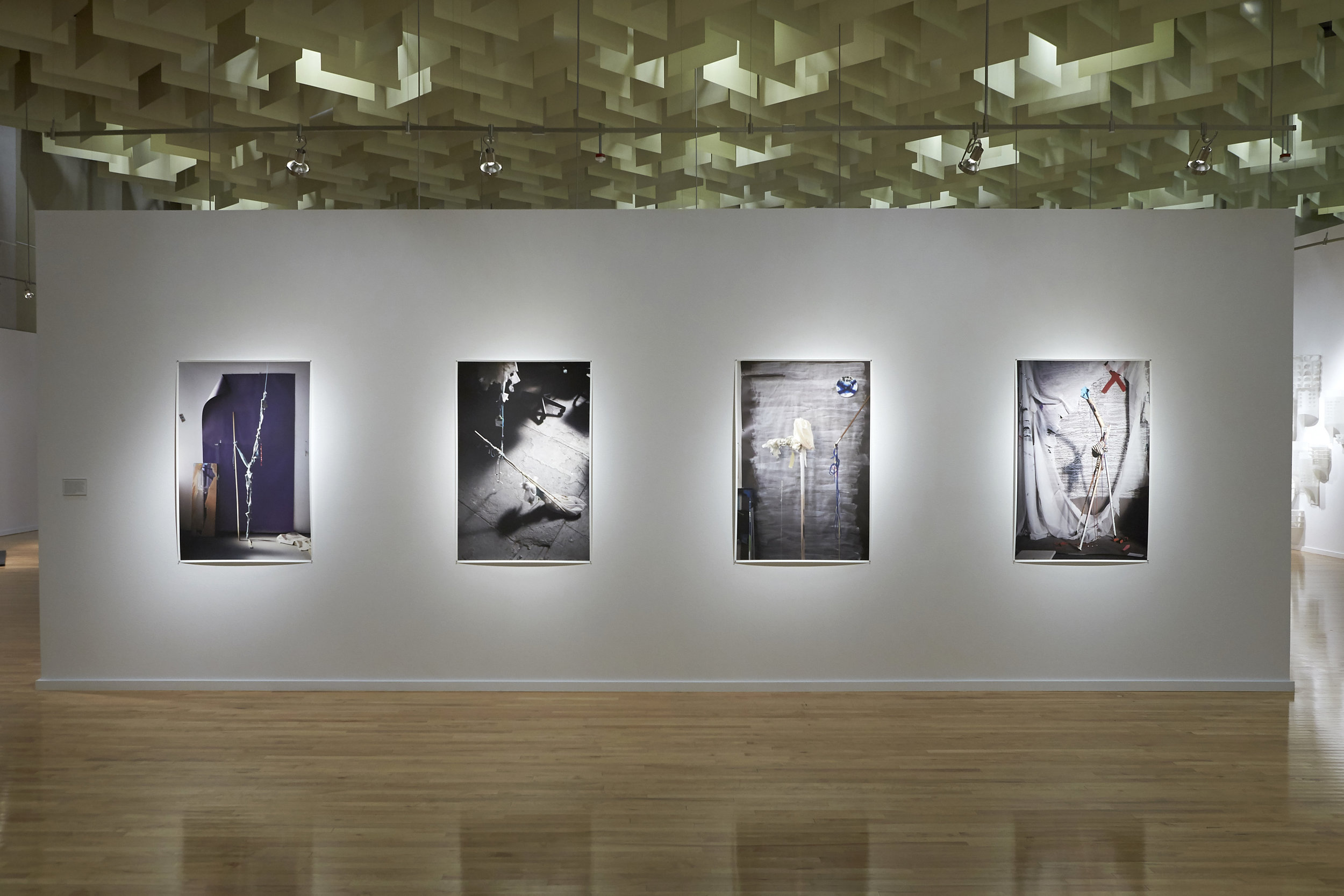 installation view of David Gilbert's archival inkjet prints in the exhibition FIVE at the Marjorie Barrick Museum. All works courtesy the artist, Klaus von Nichtssagend Gallery, NYC and Anthony Meier Arts, San Francisco, CA. (photo credit: R. Marsh Starks / UNLV Photo Services)