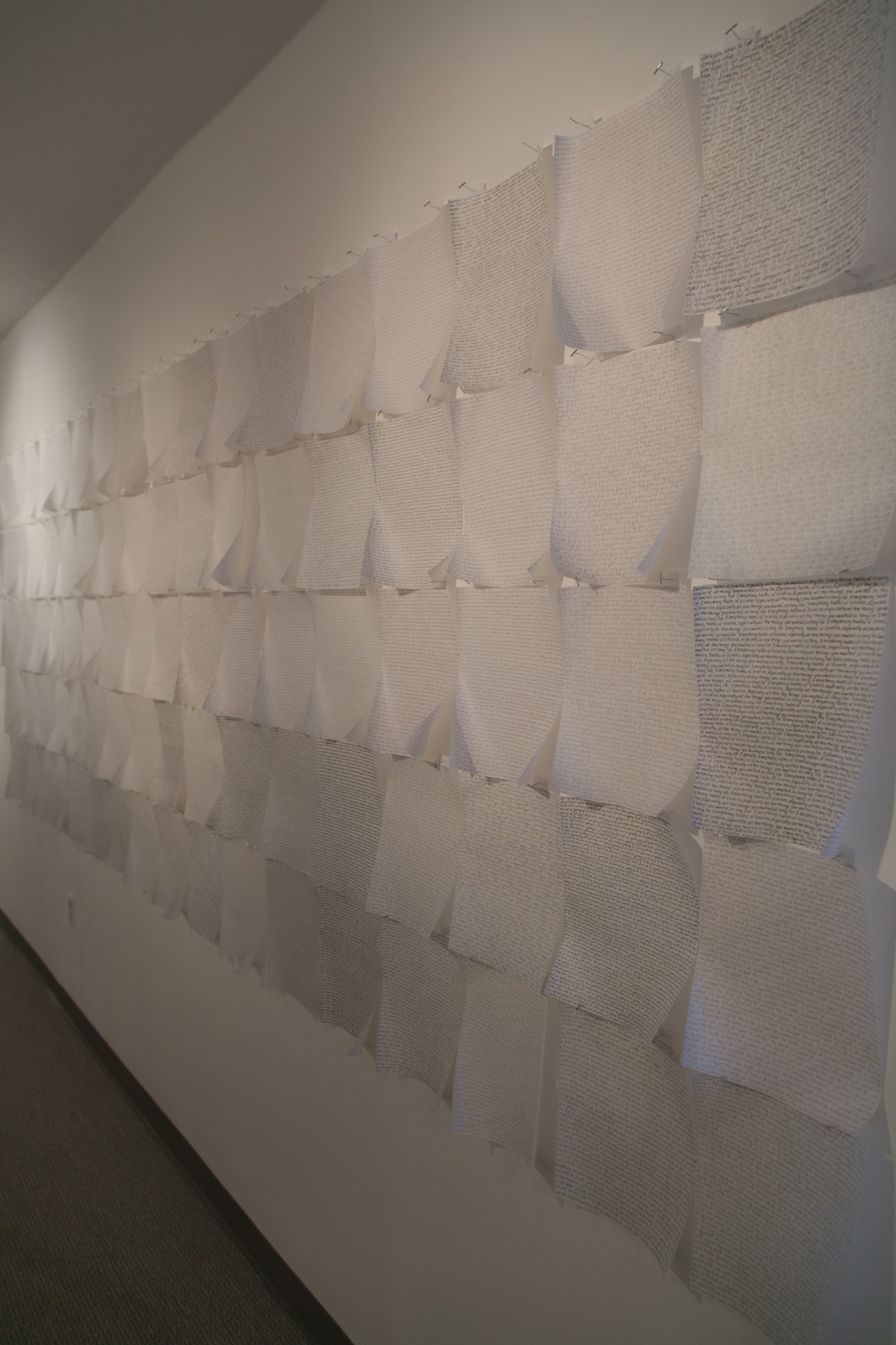 Ramirez | I'm sorry we lied, installation view | ink on linen paper