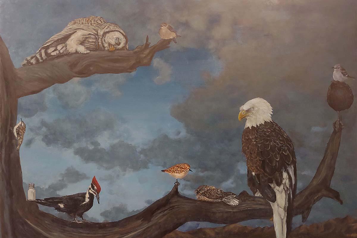 Darren Johnson,  Concert of Birds - State Song Snore , oil on canvas, 2018. Photo Darren Johnson.