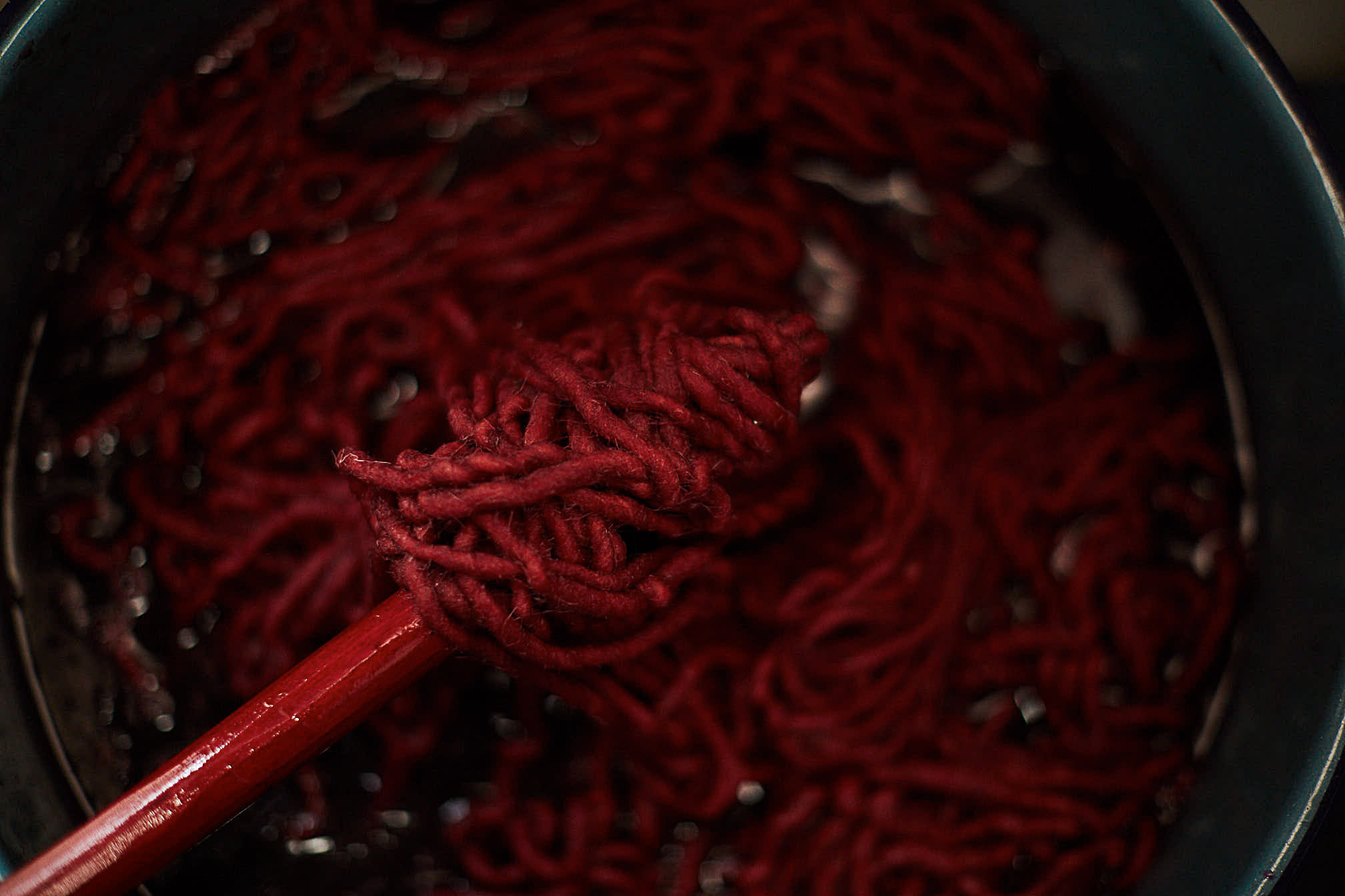Madda Studio natural dye process using cochineal to hand-dye wool