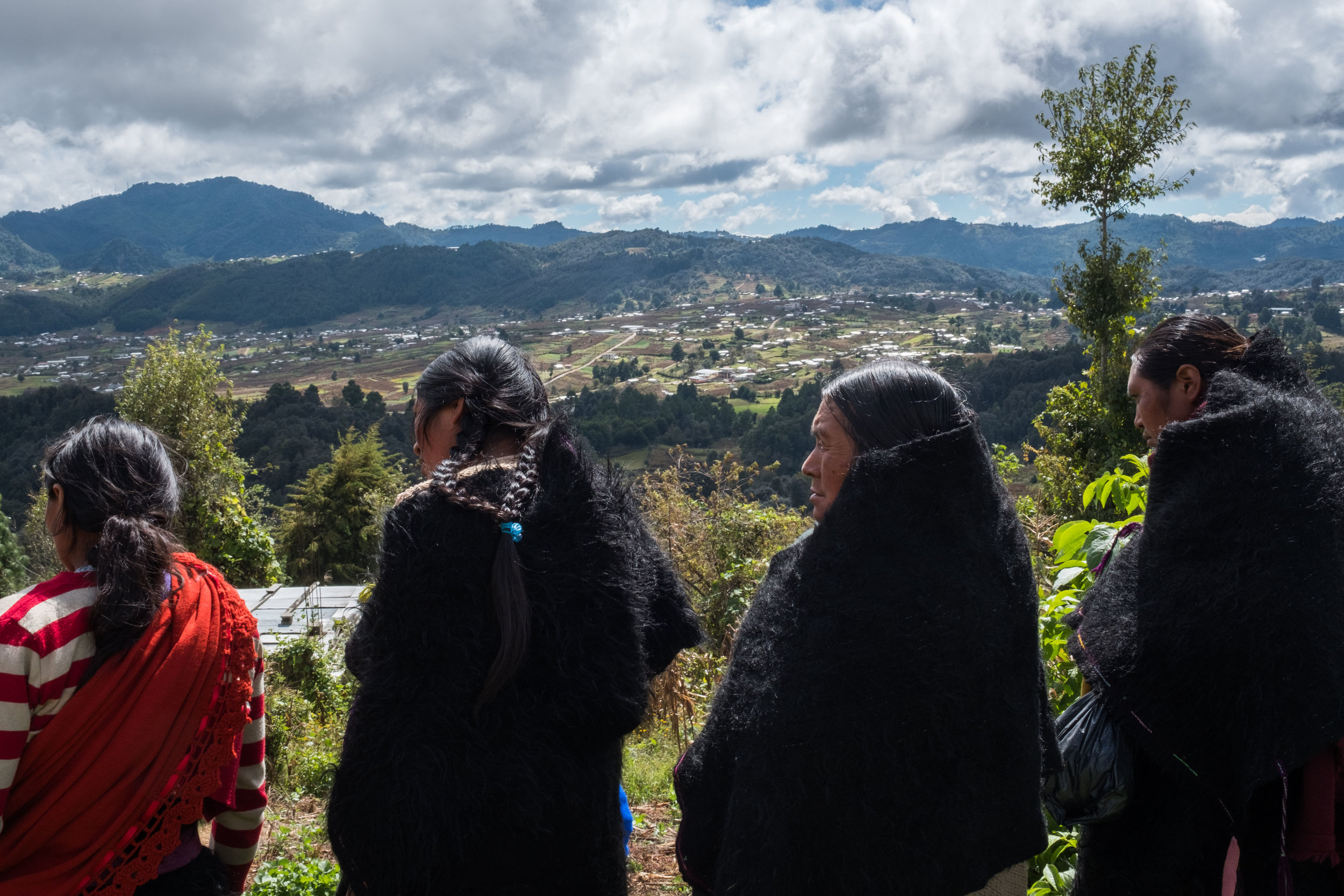 Photo: Jeoffrey Guillemard courtesy El Camino de Los Altos A.C.