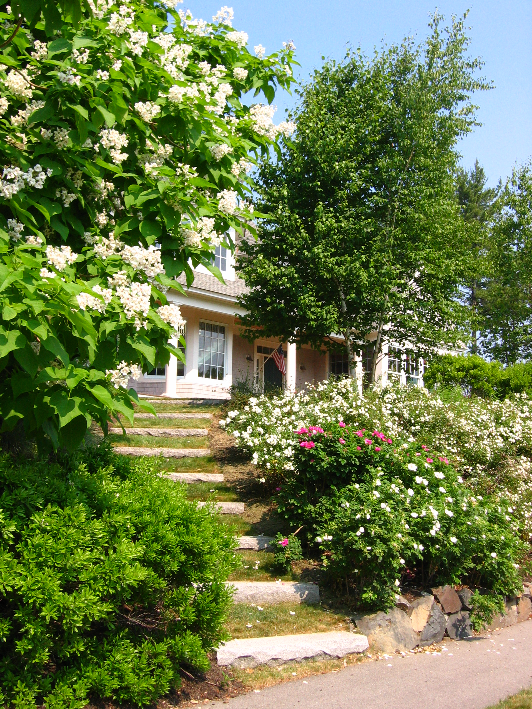 Granite Steps set in Lawn.JPG