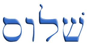 shalom_hebrew_trucker_hat-r3e860ad20cfb45129d30d140b911e80f_eahwb_8byvr_307.jpg