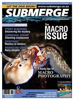 Emag-Submerge-FebMar-2014-1.jpg