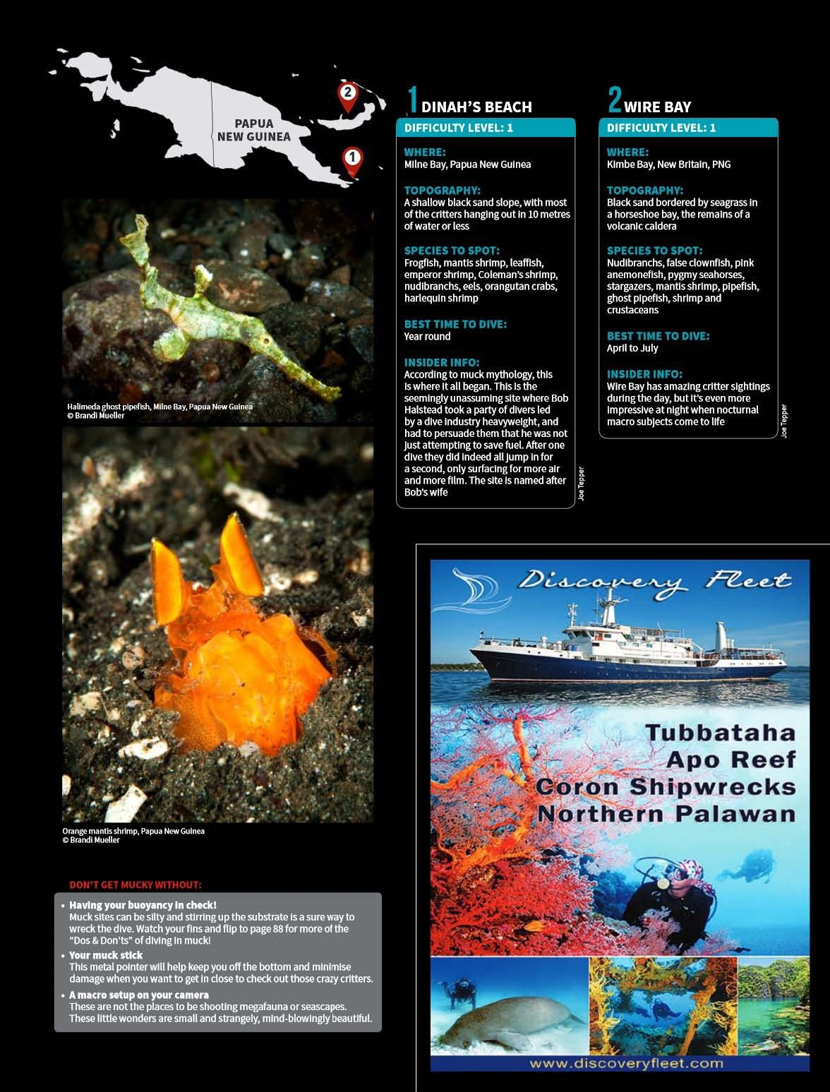 Asian Diver 3-2016 25 of the Best Muck Dives in Asia Pacific.jpg