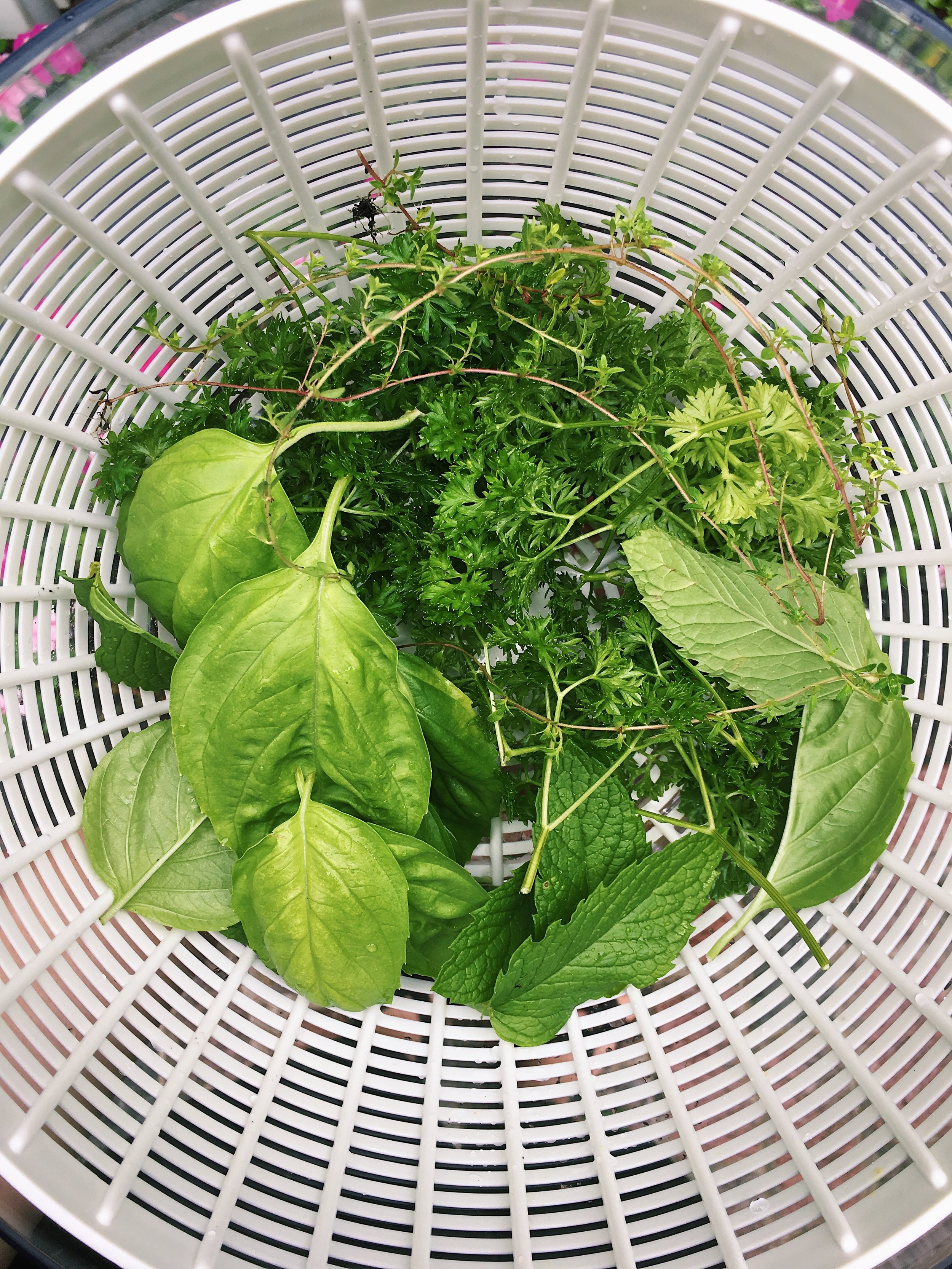 Salad Spinner - No need for pre-packaged and washed salad greens.A salad spinner allows you to clean and dry lettuce and herbs. Good for right out of the ground, dirty and delicate lettuce.Click Here for inspiration