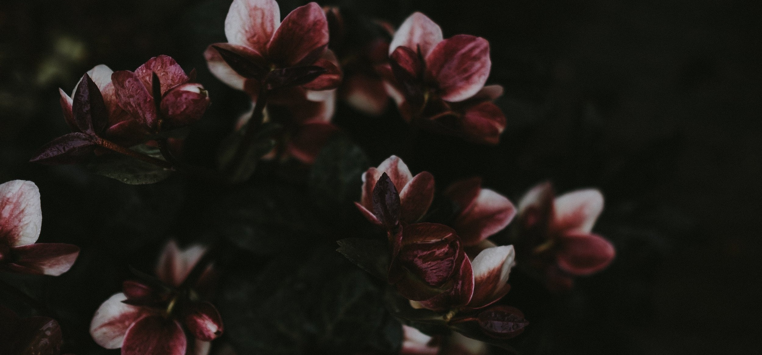 Pressing & Preserving Memories into Custom Bouquet Art. -
