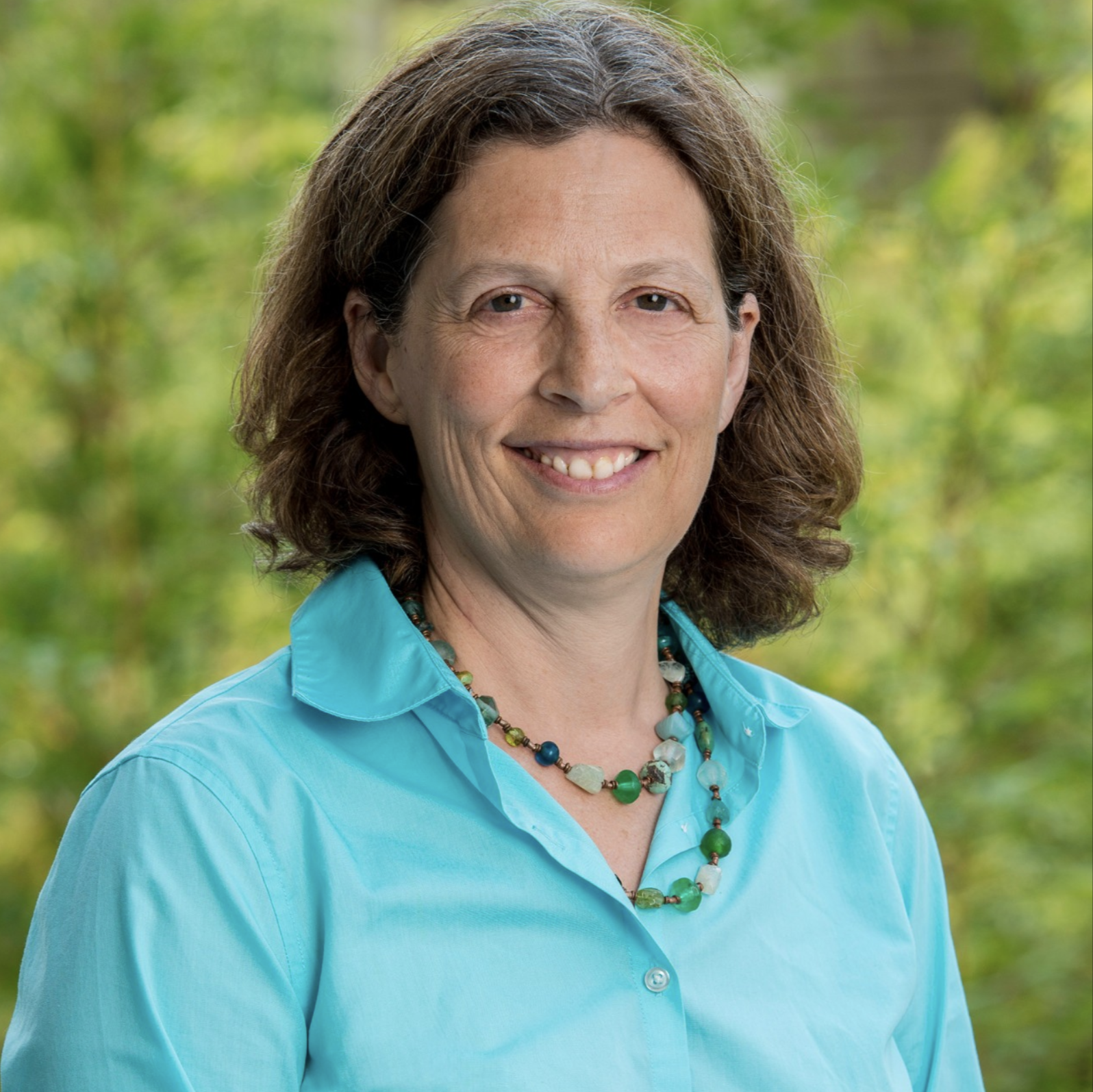 Dr. Julie Parsonnet, Professor of Medicine and of Health Research and Policy