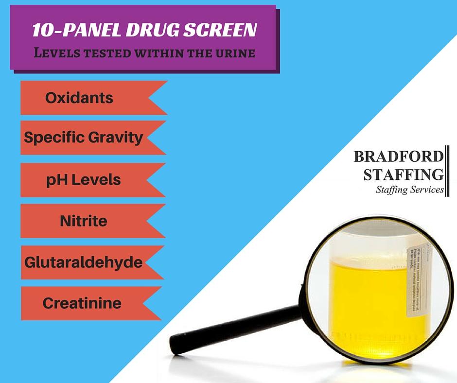BradfordStaffingVA 10 panel drug screen.jpg