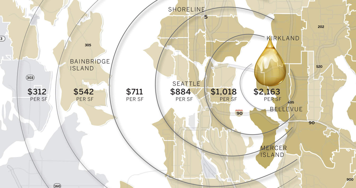 Gold+Coast+Ripple+Graphic+for+SIte.jpg