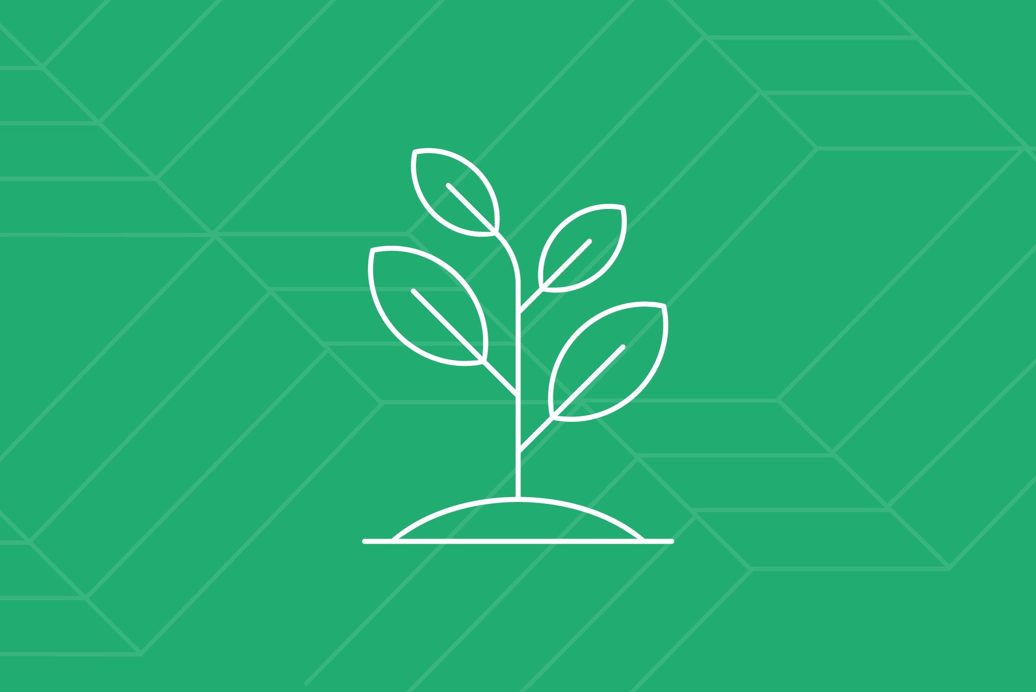 Emergent Healthcare Companies - We know startups and growth-stage companies, with their inherent challenges and opportunities. We help with their unique needs, including growth strategy, market positioning, prospect identification and market introductions.