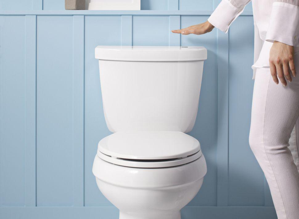 touchelss toilet.jpg