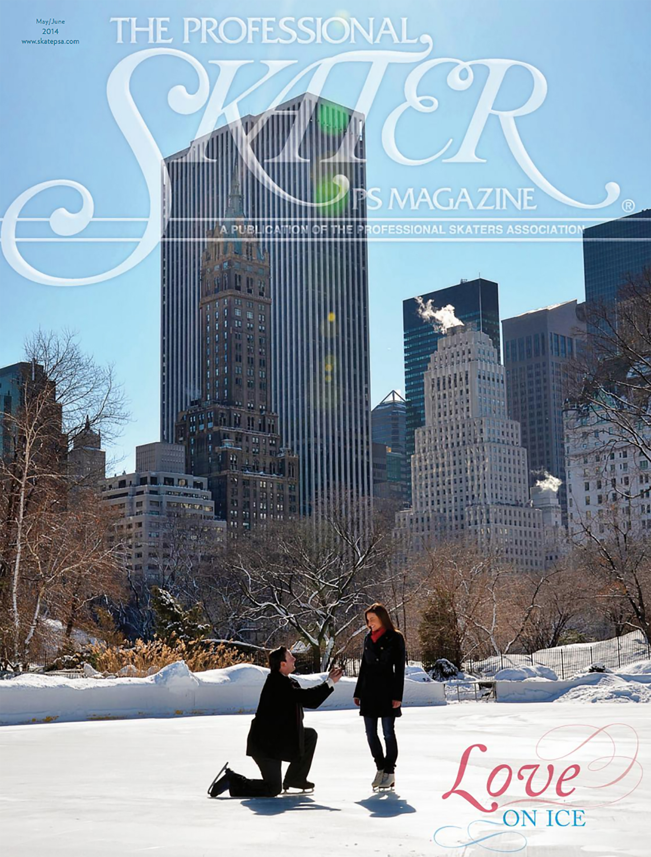 The Professional Skater Magazine - cover by Andrew Werner.jpg