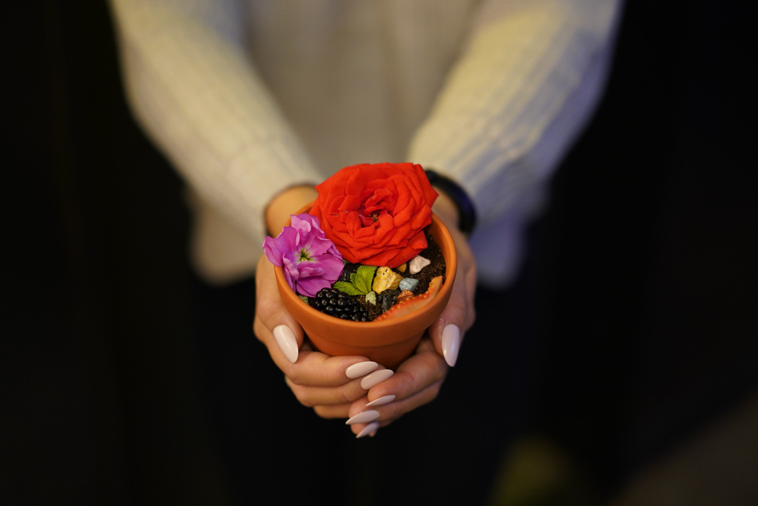 edible flower pot dessert carlotta bar toronto queen west