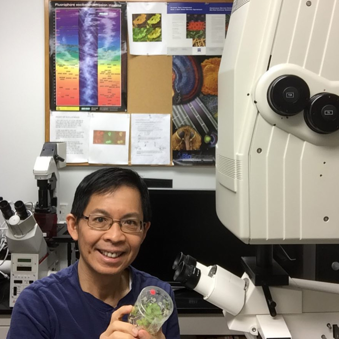 Elison Blancaflor  @noble_cell_imaging Specialty: Plant Biology