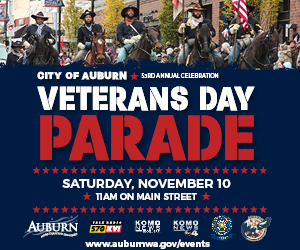 18_VeteransDay_DigitalAd 300x250.jpg