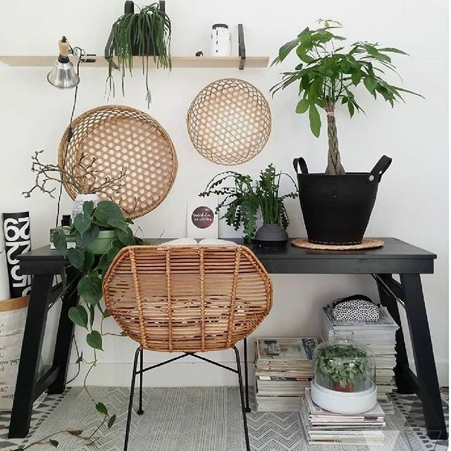 🔸Anyone else's work space starting to look like this? #crazyplantlady Already up and at em this morning planning away. Anyone else find this time of year ridiculously busy? Or is it just me? 🤔 - 📷 via Pinterest🔸