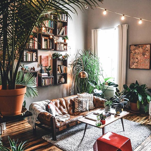 🔸Living space goals 😍 pretty sure I'm turning into a crazy plant lady 🌿🌱🌼 - image via Pinterest 🔸