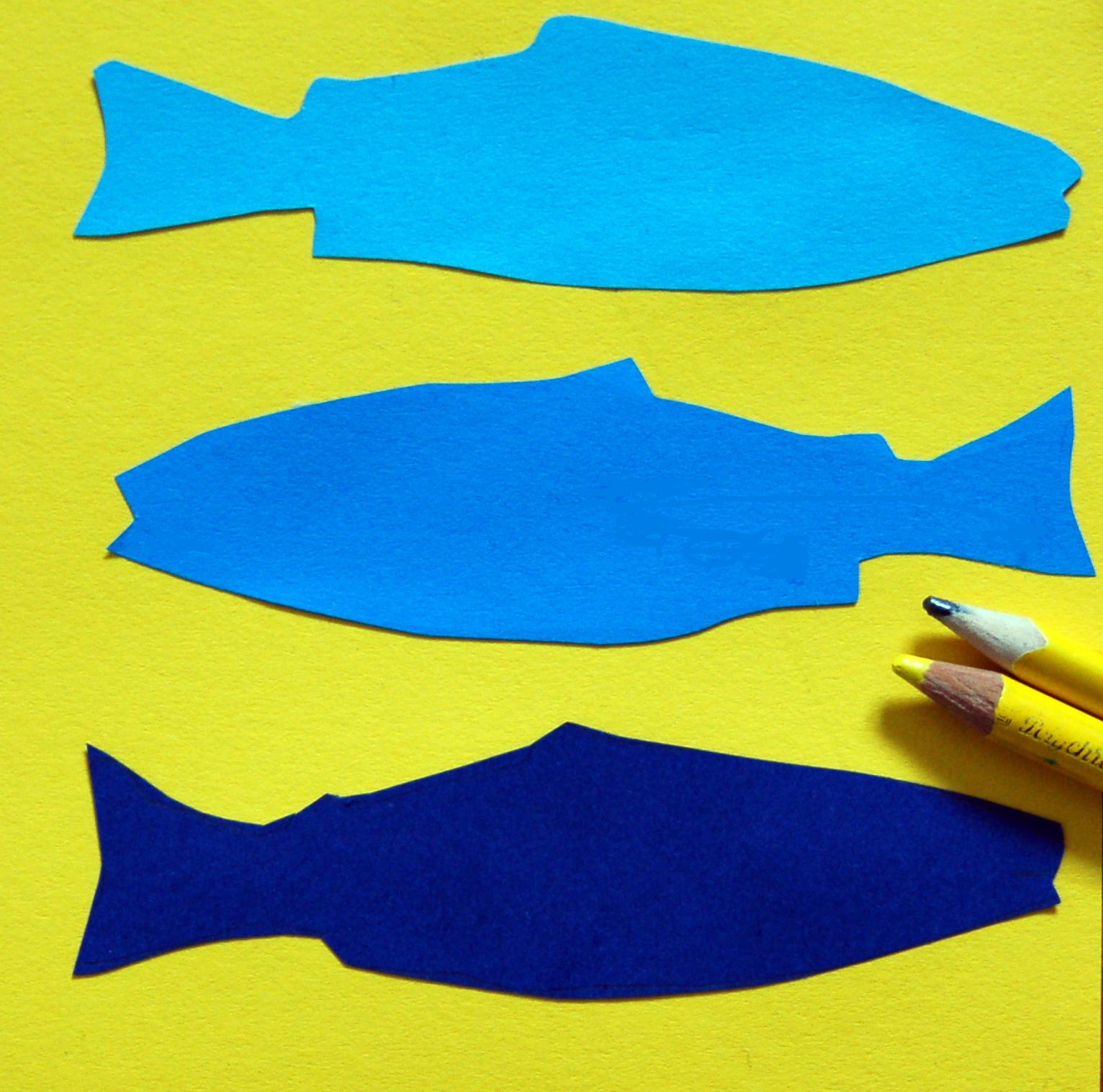 fishy-workshop.jpg