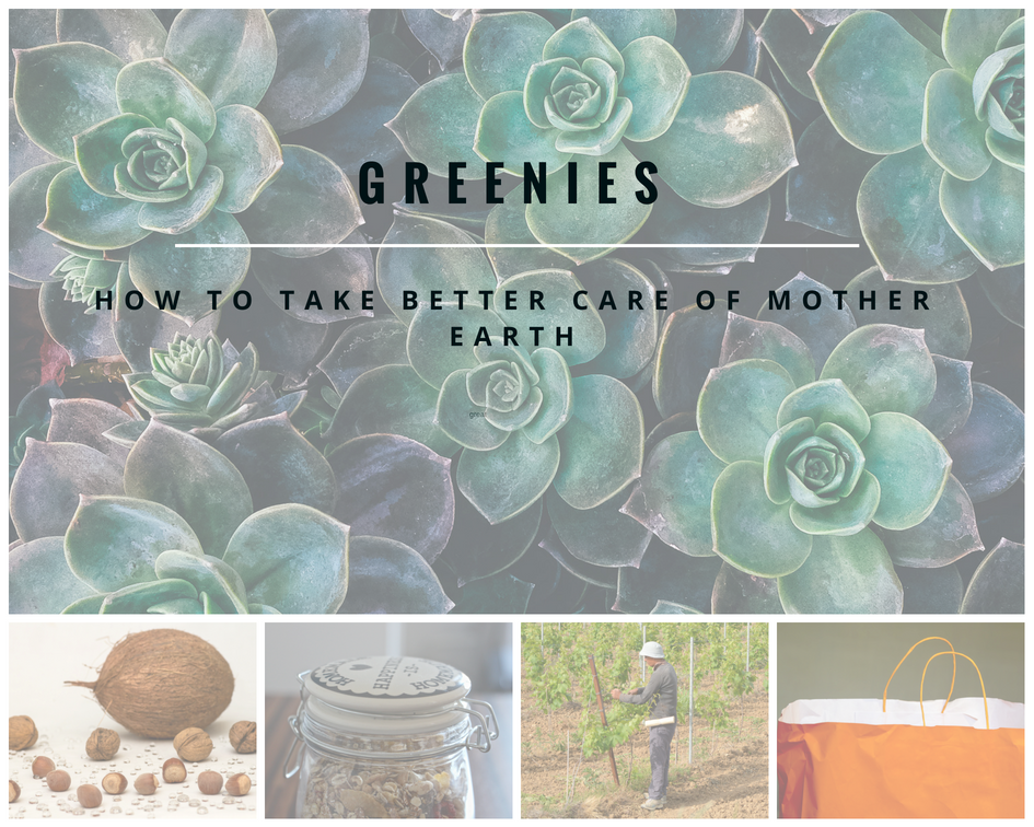 Greenies, how to take better care of mother nature earth, an easy guide, A life lead simply, #mothernature #naturalliving #ecofriendly #ecoconscious #healthy #responsible #simpleliving, Blog graphic collage ALLS.png