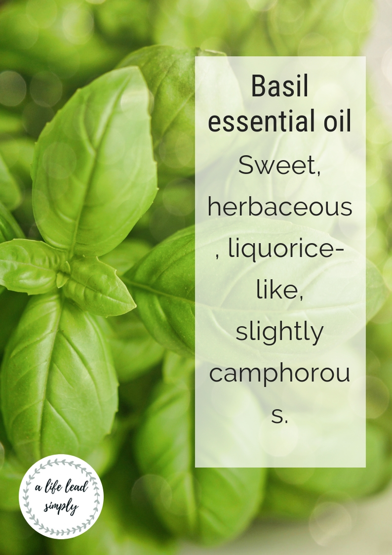 Basil essential oil, a life lead simply, natural health #natural #health #simplify #zerowaste #essentialoils #basilessentialoil #simplehealth #simpleliving #intentional  (1).jpg