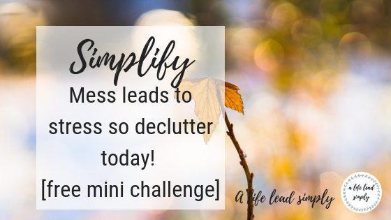 Simplify your life, Budgeting and keeping track of your money, expenses and income, A life lead simply.com #budget #simplify #minimalist #simple #money #simpleliving #frugal #frugalliving #sae (6).png