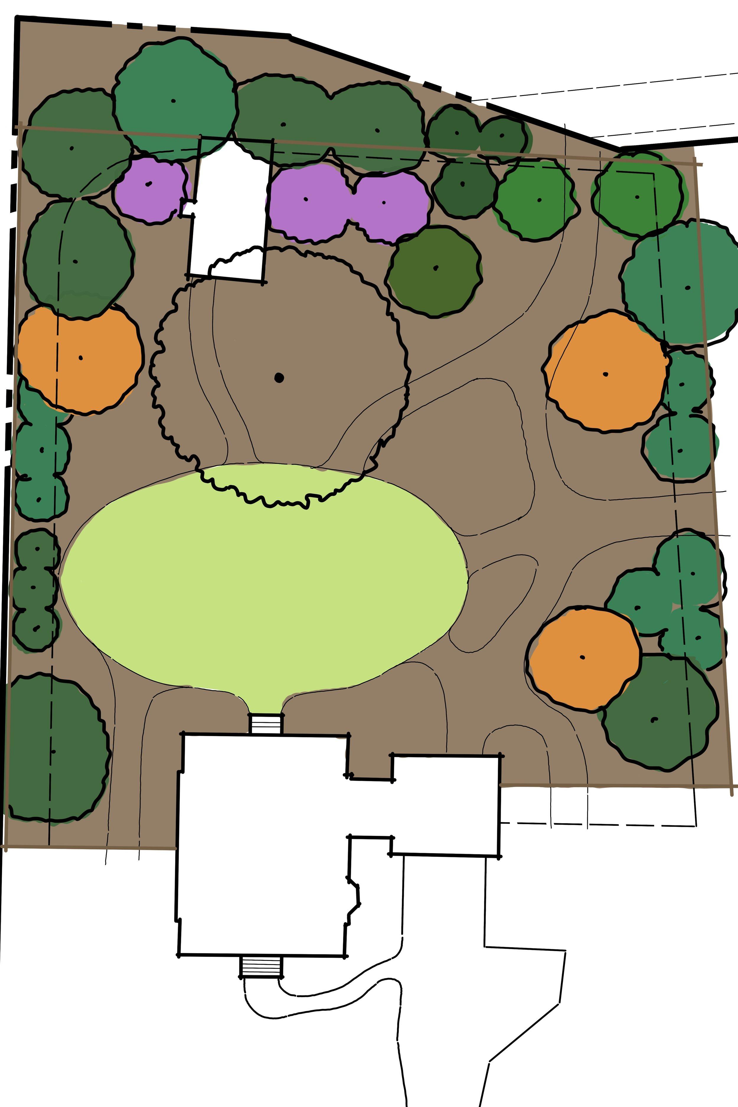 Schoonmaker_Concept_Plants.sidescreen.jpg