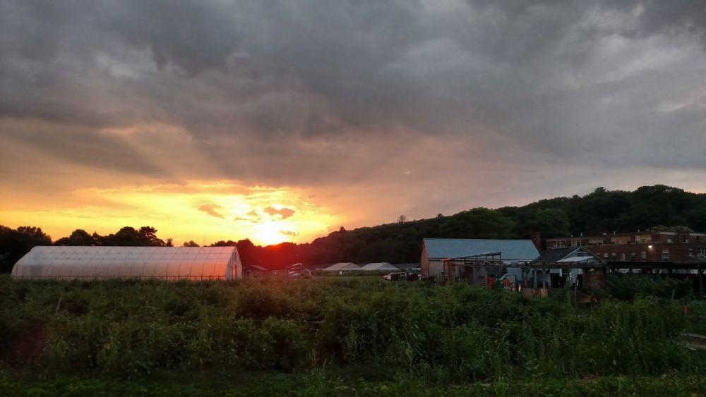 sunset_1000_563_80.jpg