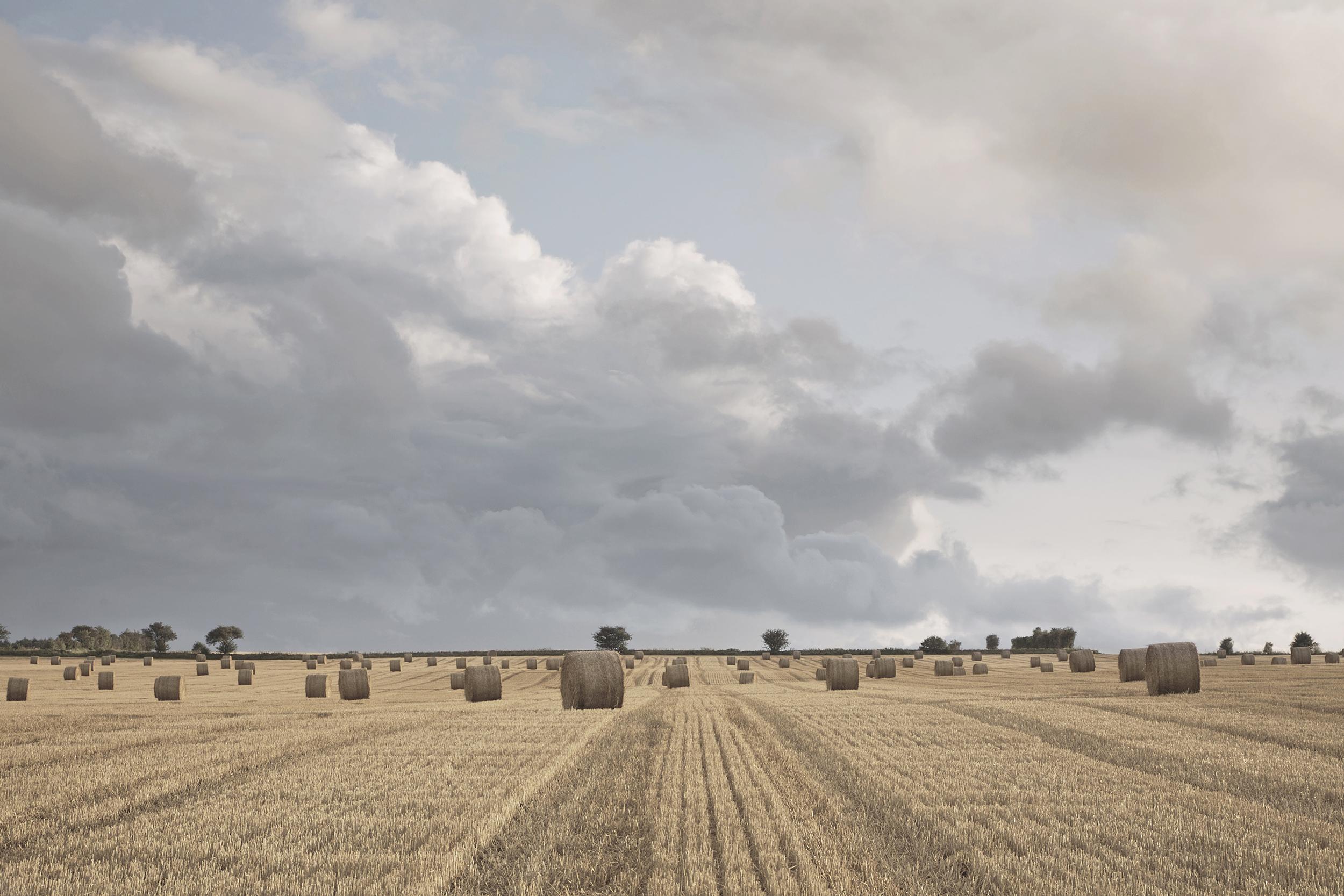 Gloucestershire landscape, CLTB