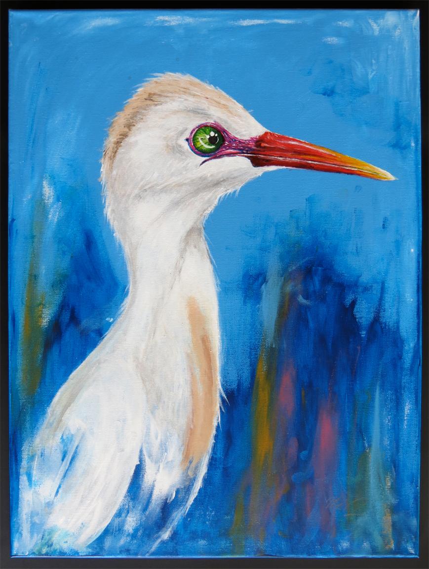 Cattle Egret $200