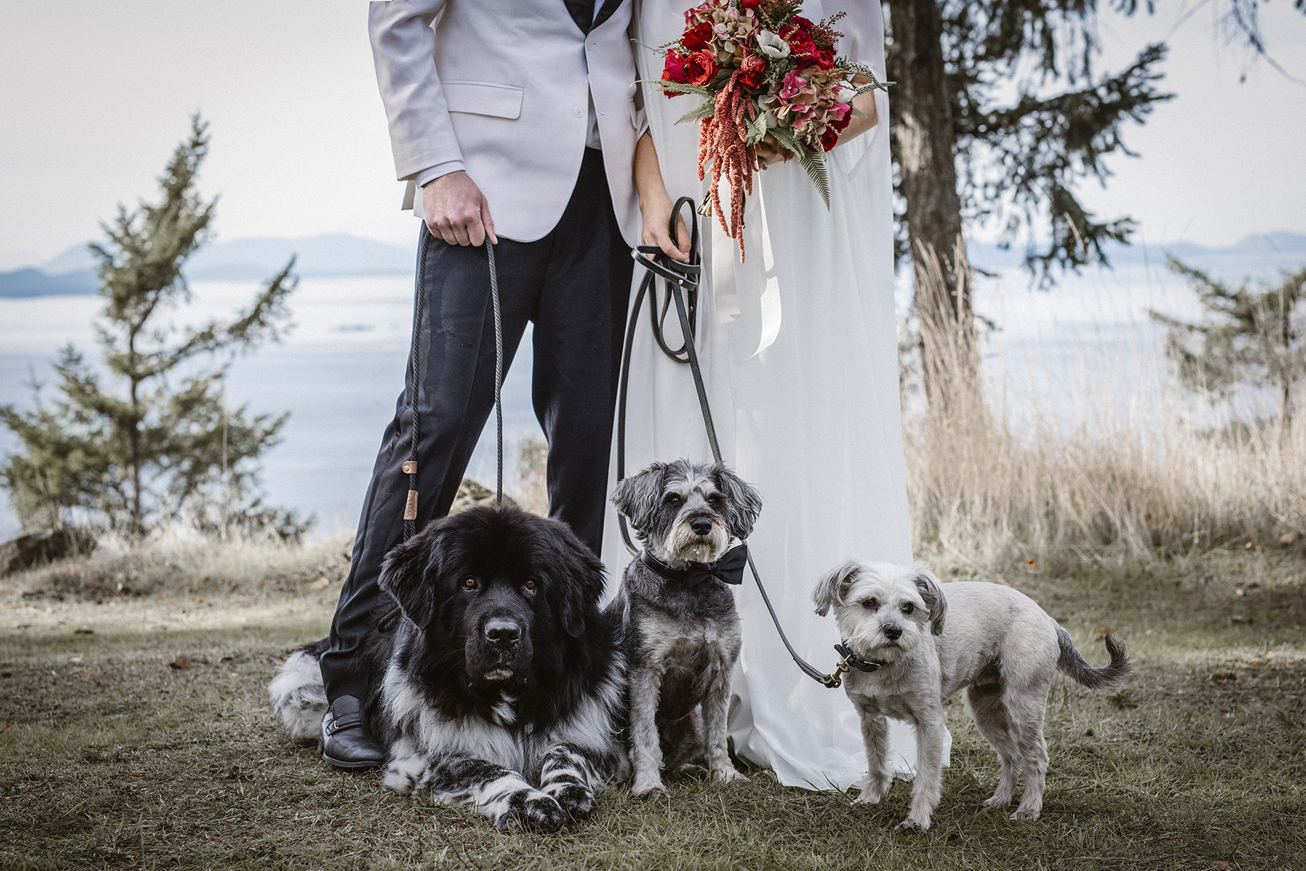 orcas island wedding photographer