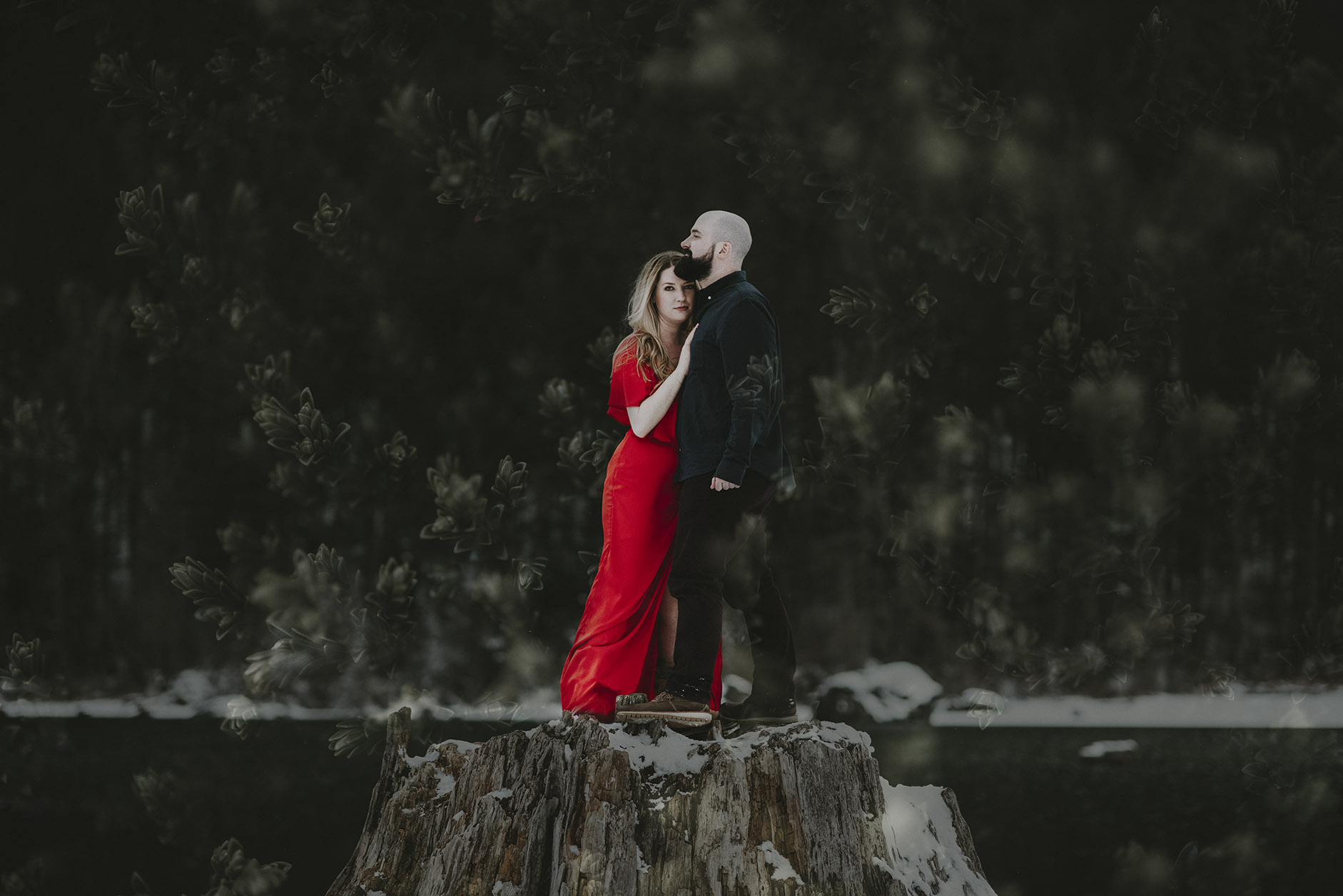 washington engagement photographer