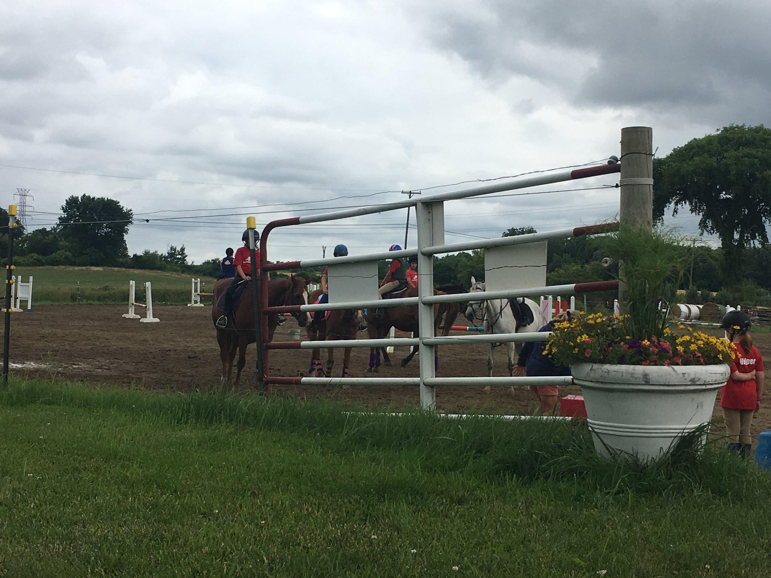 Summer Fun - SAFETY, HORSEMANSHIP, FUN