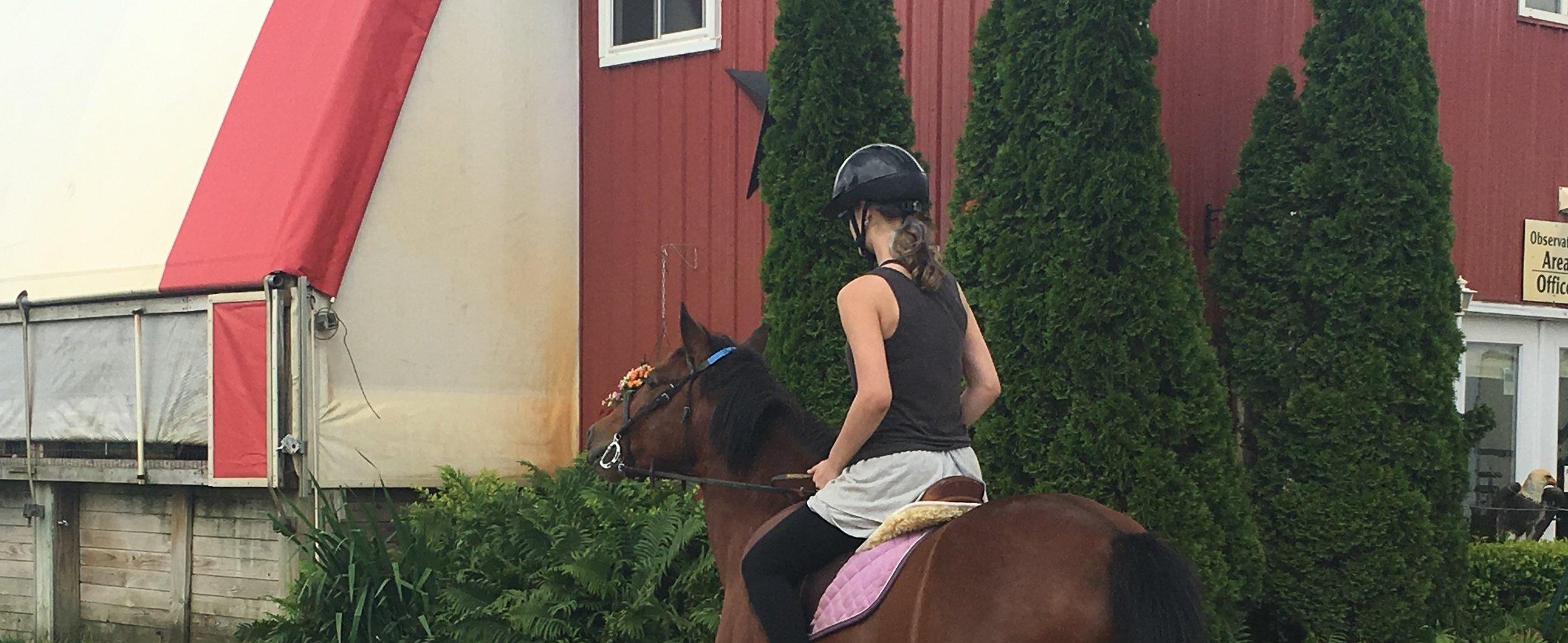LESSONS - HORSEBACK RIDING AT CEDAR RIDGE