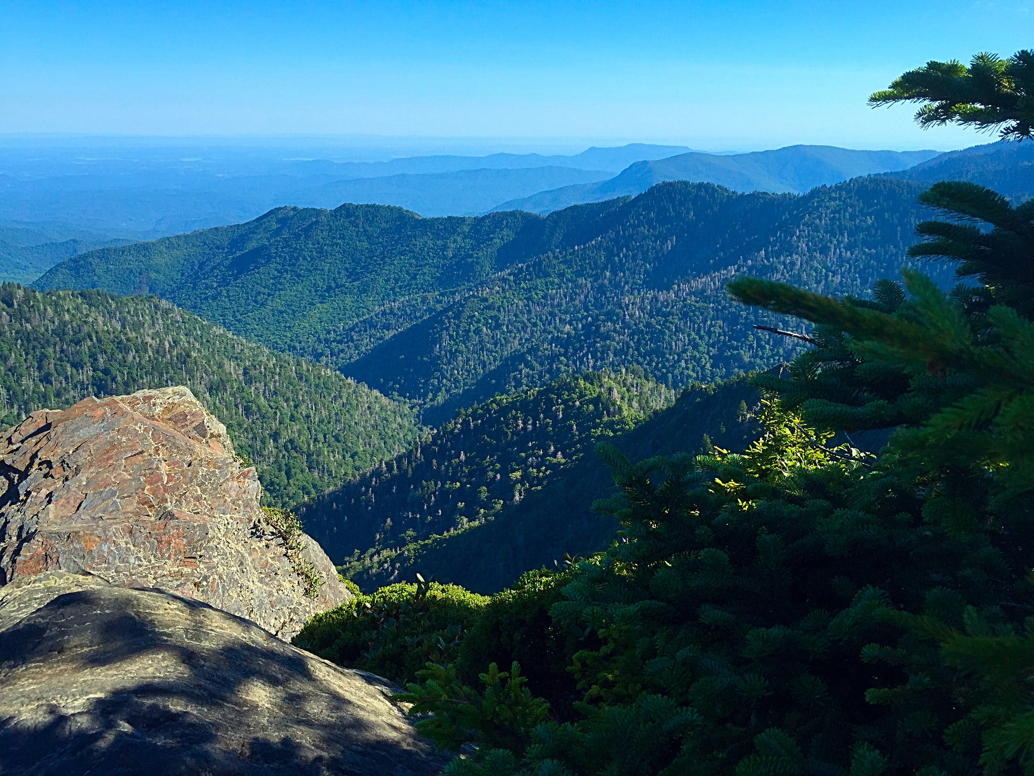 Great Smoky Mountain National Forest