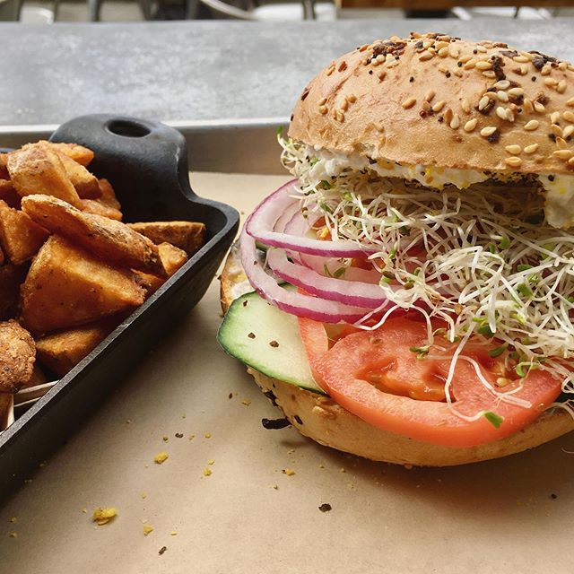 The only basic thing about our new Basic Bagel is that it's basically the best bagel you'll ever have 😉 An everything bagel with ample cream cheese, sprouts, tomato, red onion, and cucumber 🥒 🍅 🥯 #foodie #breakfast #brunch #lunch #vegetarian #eatlocal #drinklocal #pacificbeach #california