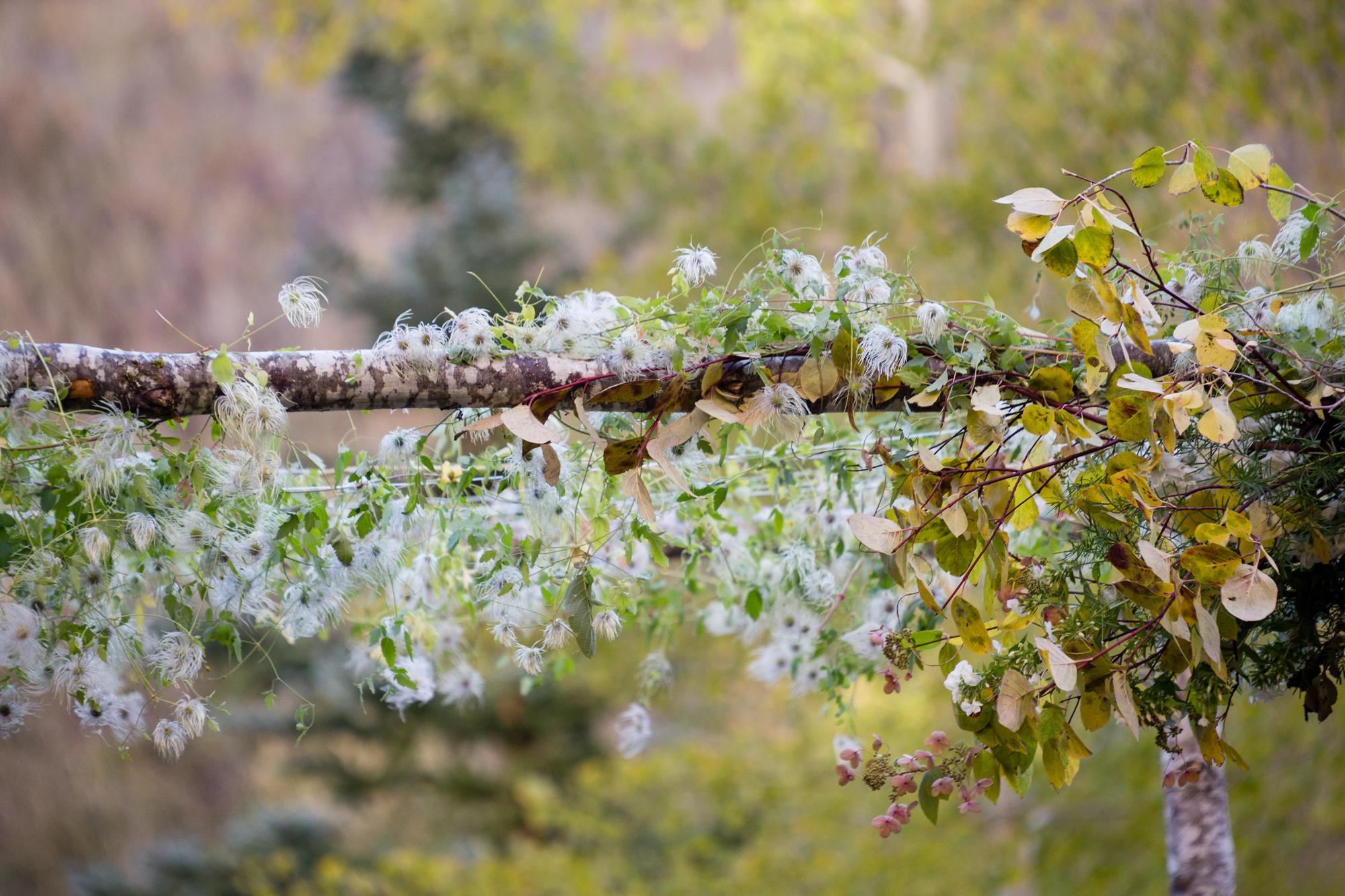 montage-deer-valley-fall-wedding-12.jpg