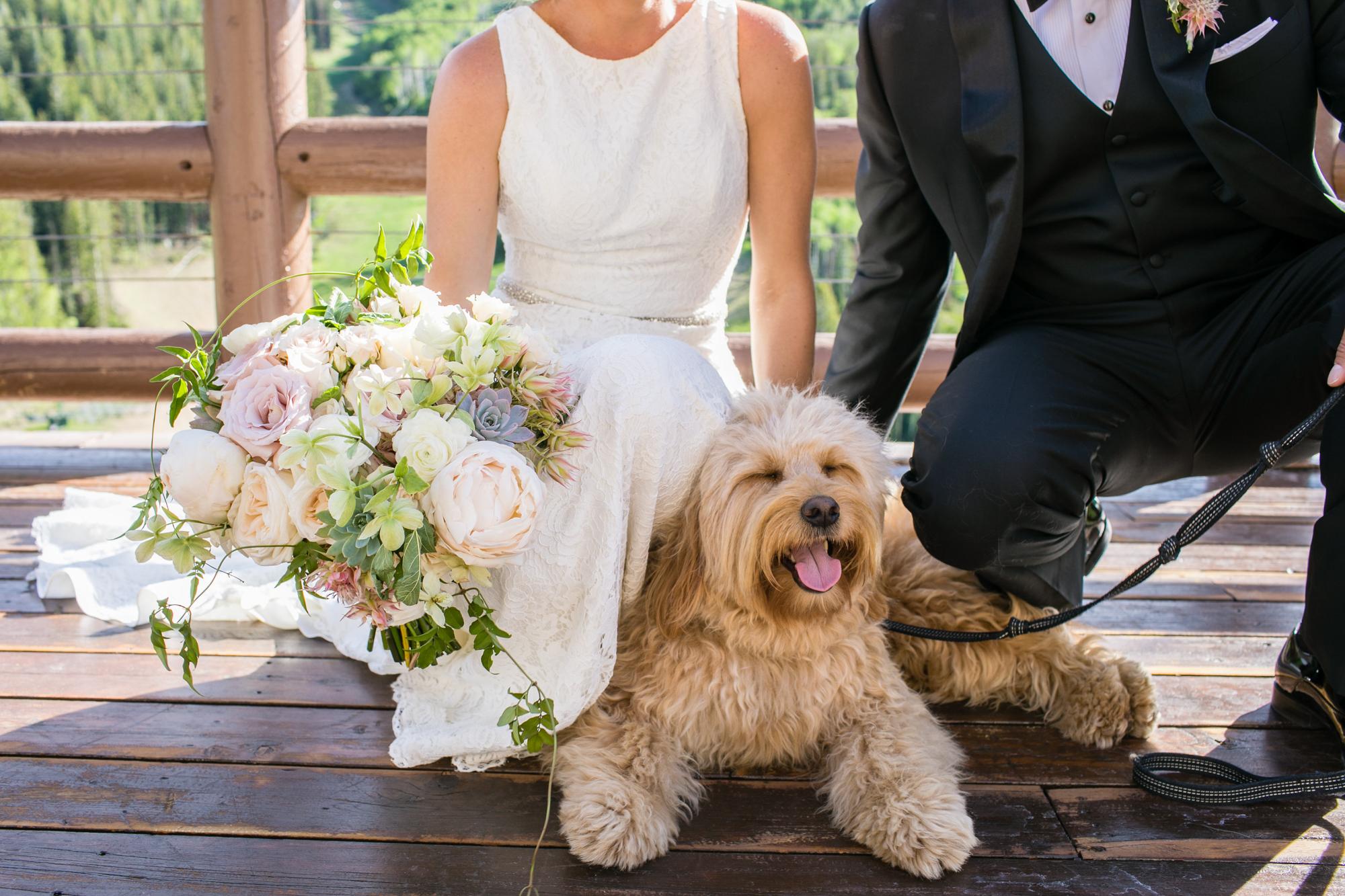 stein-eriksen-wedding-photographer-19.jpg