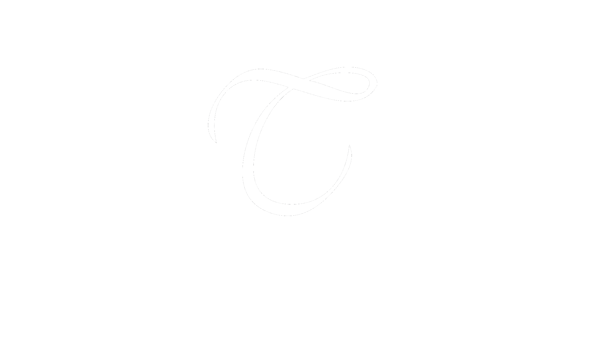 Top Notch Logo_Original copy white.png