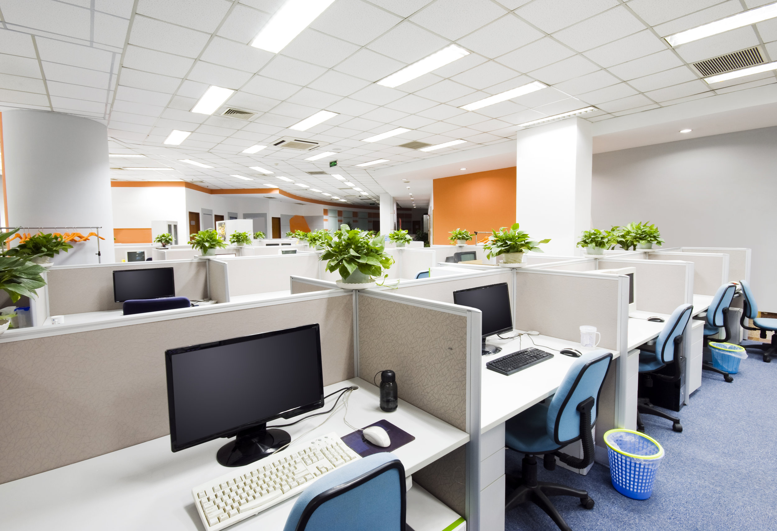 Cubicles & Office Areas: - Clean Desks (as Specified)Dry Dust Surfaces (as Specified)Empty Trash and Replace LinersVacuum and Mop Floor Areas