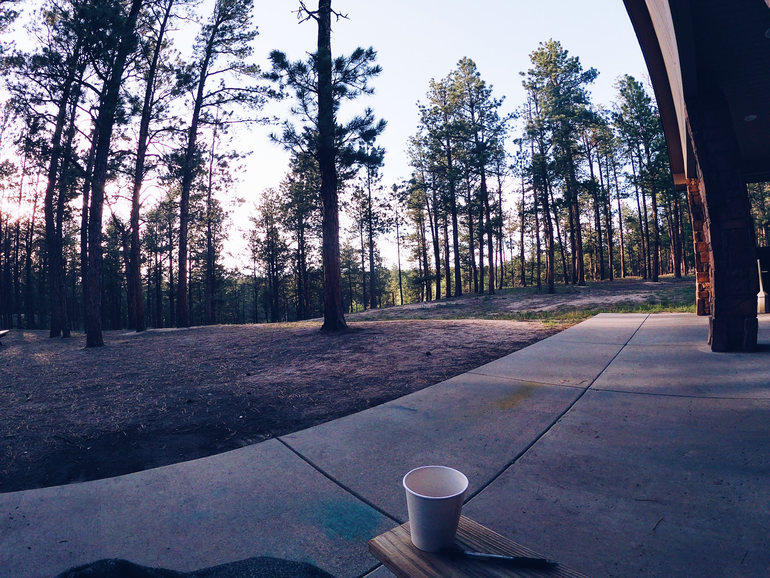 The view from my cabin at La Foret.