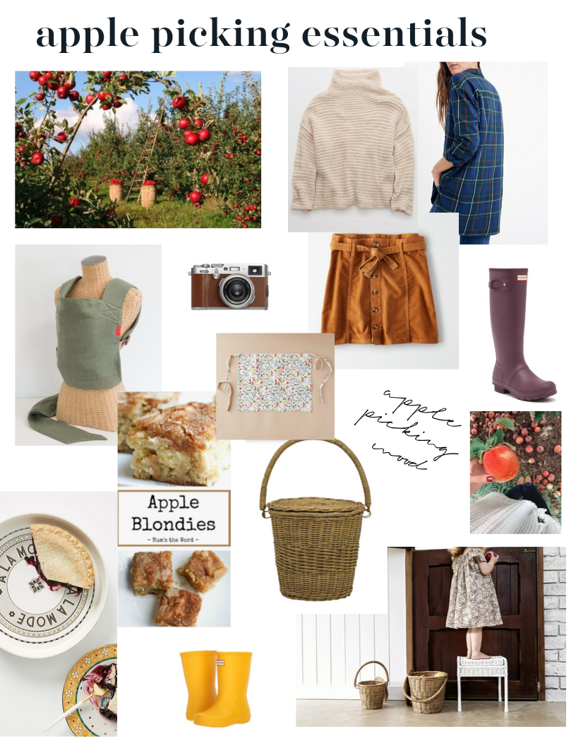 apple picking essentials.png