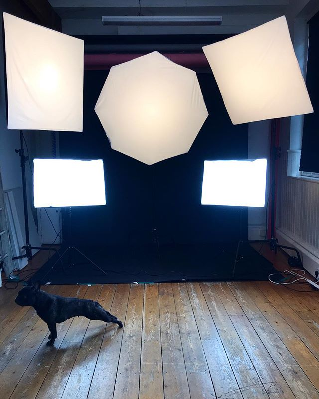 We've added some more lighting equipment! When you hire Lover Studios for your shoot, all of the following equipment is included in your booking 💕  x3 Elinchrom D-Lite 2 RX Flash Heads, x2 Interfit cool-running Head kits, x4 102cm C-Stands (x1 Grip Head & Arm), x2 100cm Soft boxes, x1 135cm Octabox, x2 Umbrellas (White Black), x1 44cm Beauty dish (Lyra not included)  Contact for rates and availability 💕
