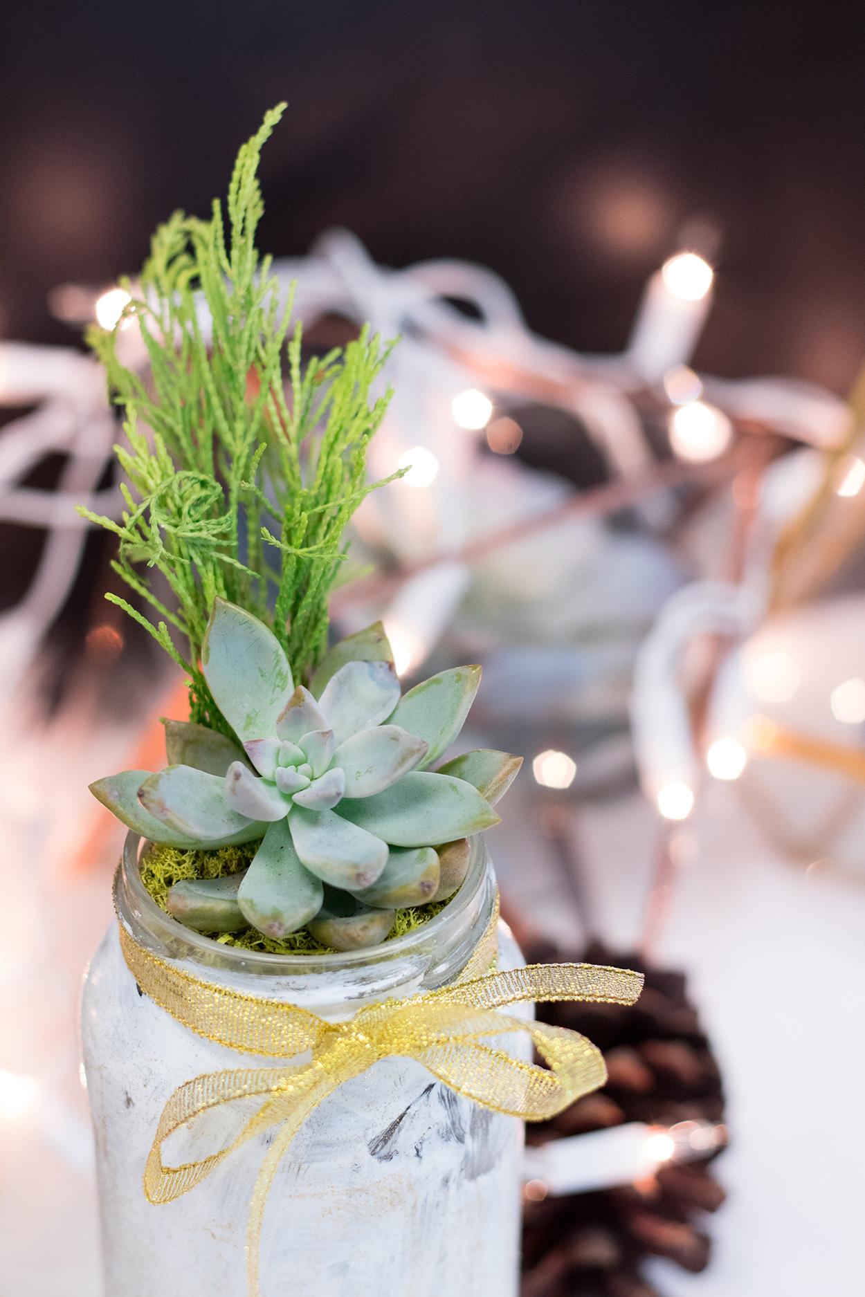 Christmas Succulent | The Key To Blog Blogging Creative Workshop