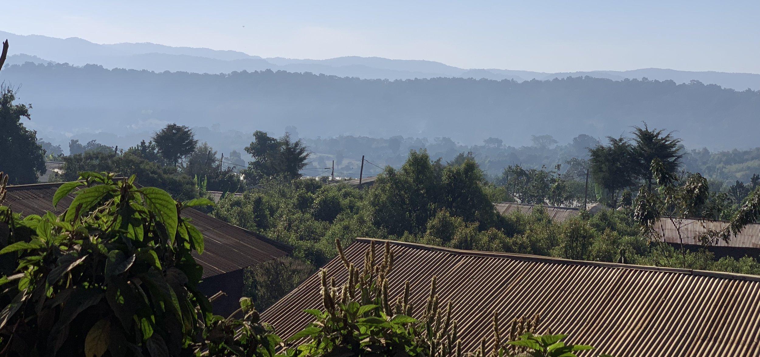 GERA FOREST - Oromia, Ethiopia