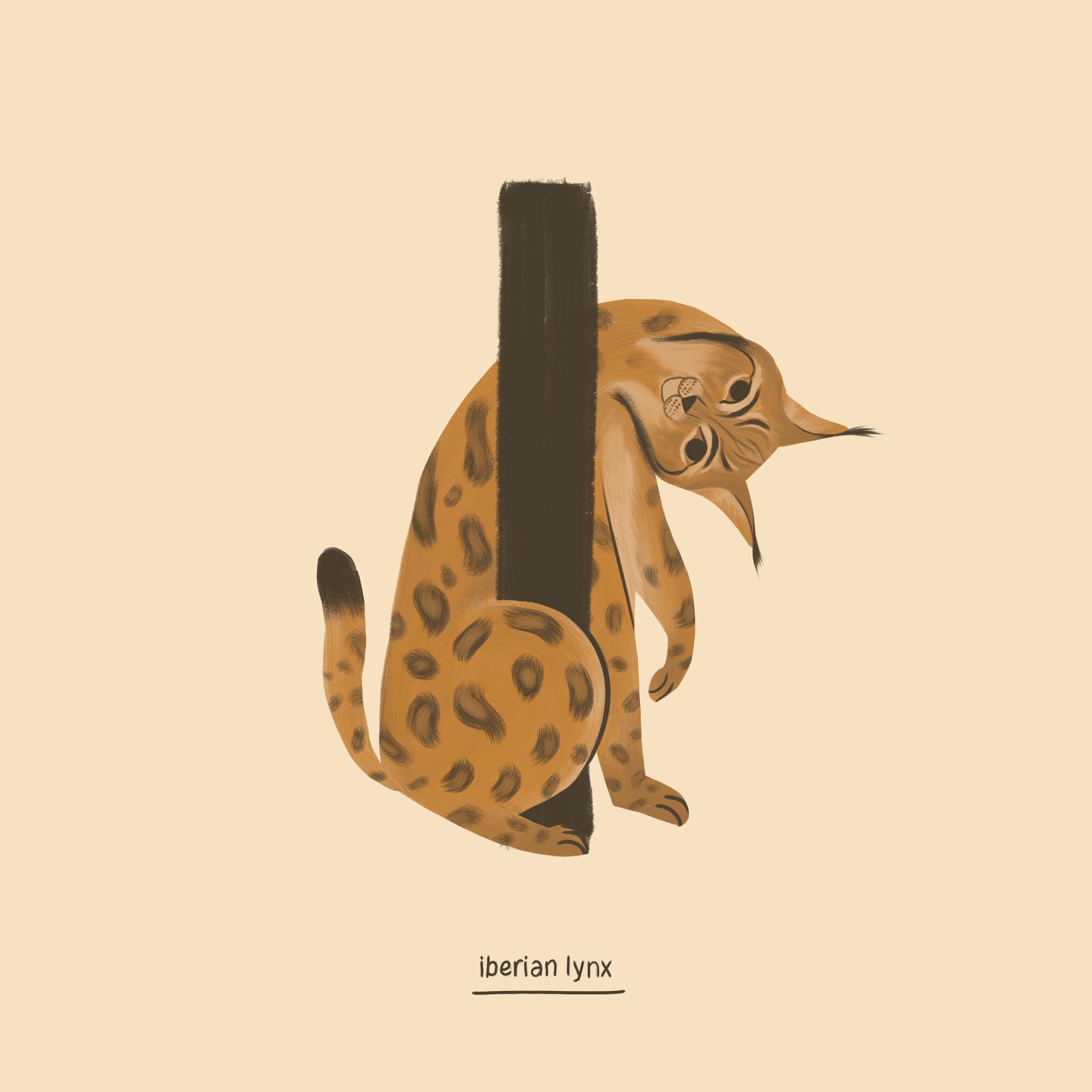 Iberian lynx.png