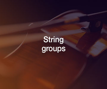 String groups | live music acts